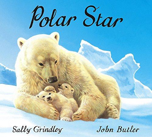 Polar Star By Sally Grindley