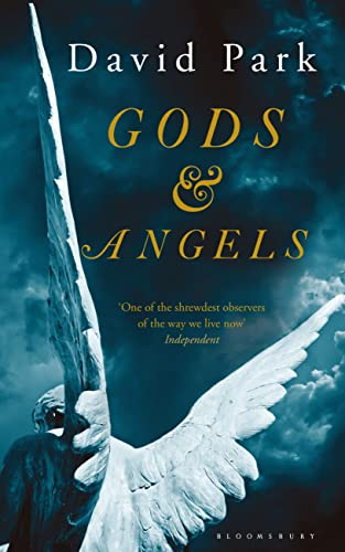 Gods and Angels By David Park