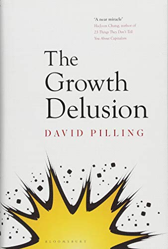 The Growth Delusion: The Wealth and Well-Being of Nations by David Pilling