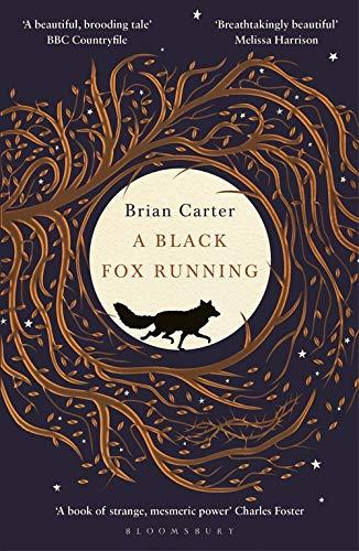 A Black Fox Running By Brian Carter