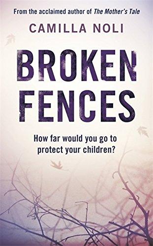 Broken Fences By Camilla Noli
