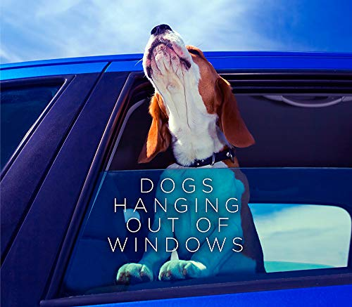 Dogs Hanging out of Windows by Various (Professor of Indian Ocean Studies, Curtin University, Australia)