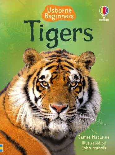 Tigers von James Maclaine