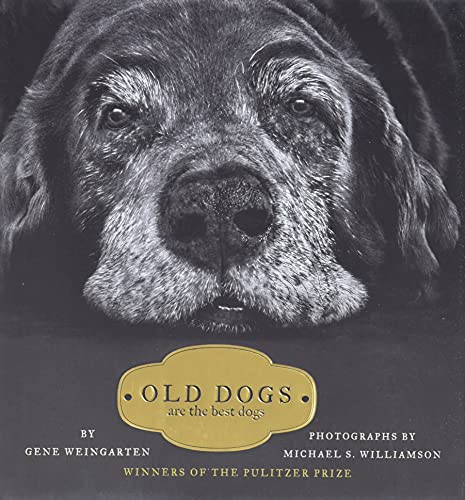 Old Dogs By Michael S. Williamson