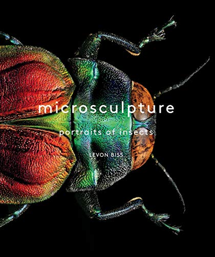 Microsculpture By Levon Biss