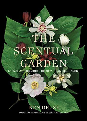 The Scentual Garden: Exploring the World of Botanical Fragrance By Ken Druse