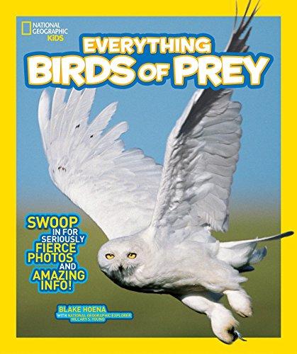 Everything Birds of Prey von Blake Hoena