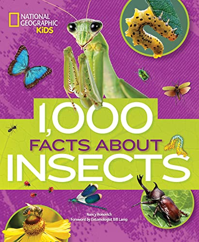 1000 Facts About Insects By National Geographic Kids
