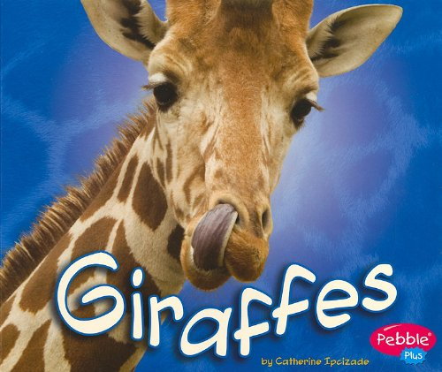 Giraffes By Catherine Ipcizade