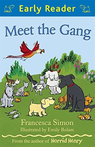 Meet the Gang von Francesca Simon
