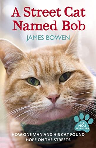 A Street Cat Named Bob von James Bowen
