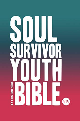 NIV Soul Survivor Youth Bible Hardback (New International Version) By New International Version
