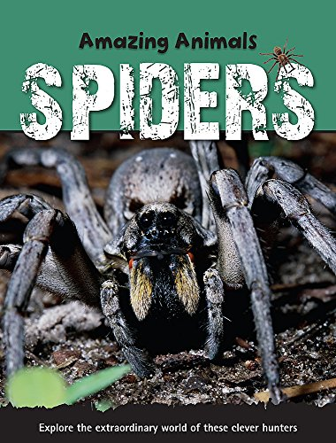 Amazing Animals: Spiders By Sally Morgan