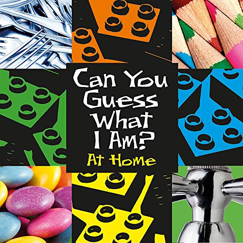 Can You Guess What I Am?: At Home By JP Percy