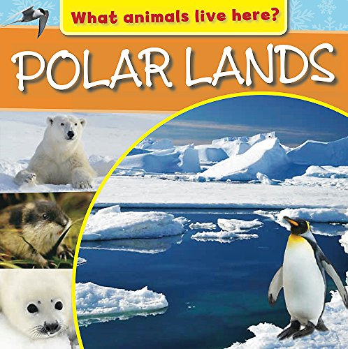 What Animals Live Here?: Polar Lands By M.J. Knight