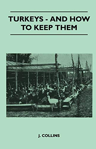 Turkeys - And How To Keep Them By J. Collins