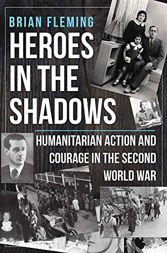 Heroes in the Shadows By Dr Brian Fleming