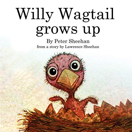 Willy Wagtail Grows Up By Peter Sheehan