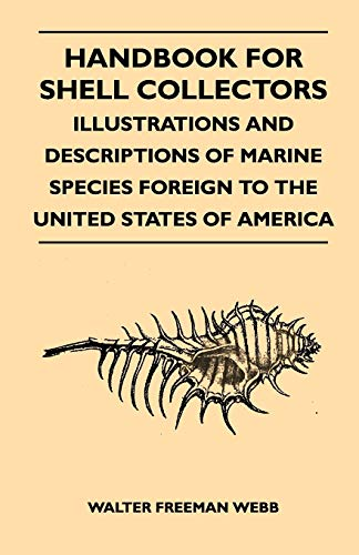 Handbook For Shell Collectors - Illustrations And Descriptions Of Marine Species Foreign To The United States Of America By Walter Freeman Webb