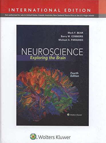 Neuroscience: Exploring the Brain (International Edition) By Mark F. Bear