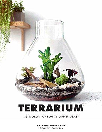 Terrarium By Anna Bauer