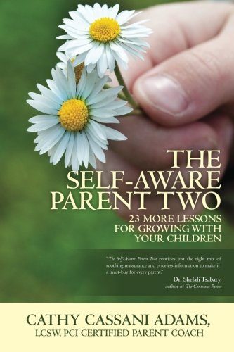The Self-Aware Parent Two By Cathy Cassani Adams Lcsw