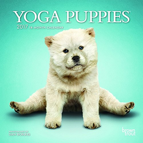 Yoga Puppies 2017 Mini Wall By BrownTrout Publishers