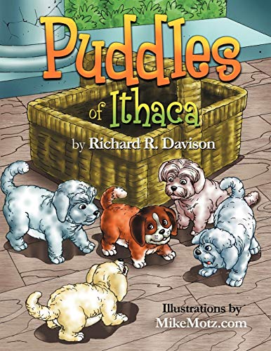 Puddles of Ithaca By Richard R Davison