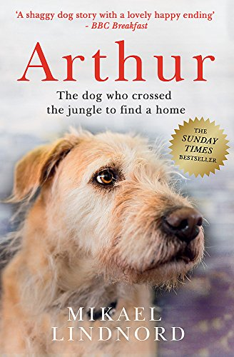 Arthur: The Dog Who Crossed the Jungle to Find a Home by Mikael Lindnord