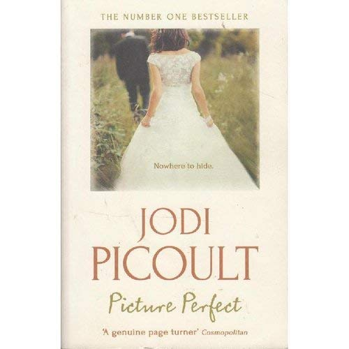 Picture Perfect By Picoult  Jodi