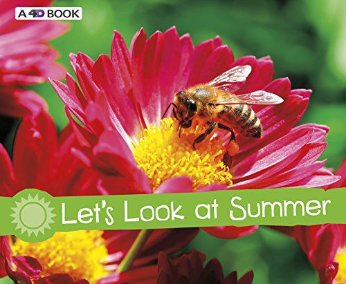 Let's Look at Summer By Sarah L. Schuette