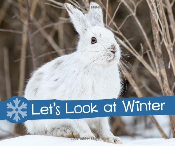 Let's Look at Winter By Sarah L. Schuette