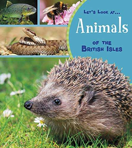 Animals of the British Isles By Lucy Beevor