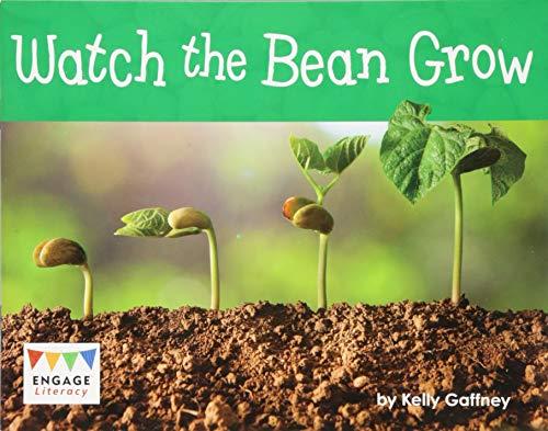 Watch the Bean Grow By Kelly Gaffney