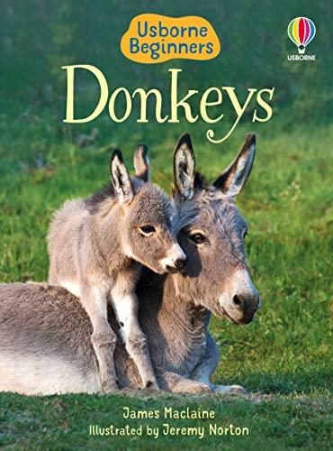 Donkeys By James Maclaine