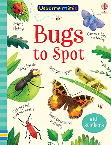 Bugs to Spot By Kirsteen Robson