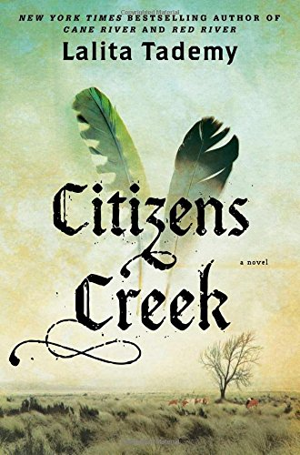 Citizens Creek By Lalita Tademy