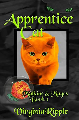 Apprentice Cat By Virginia Ripple