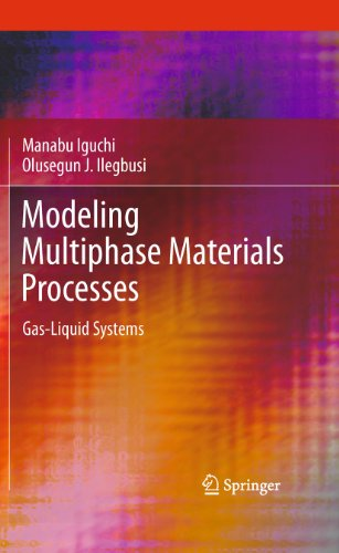 Modeling Multiphase Materials Processes By Manabu Iguchi