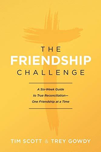Freindship Challenge, The By Tim Scott