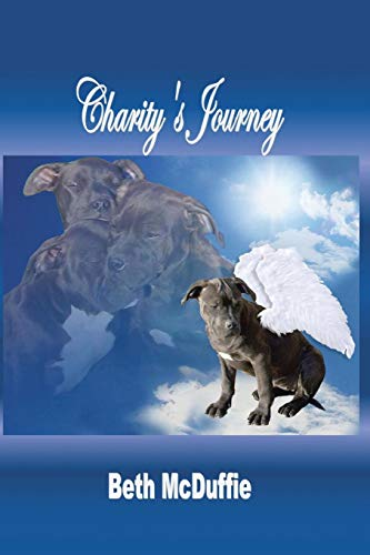 Charity's Journey By Beth McDuffie