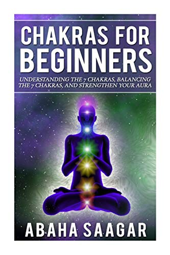 Chakras For Beginners By Abaha Saagar
