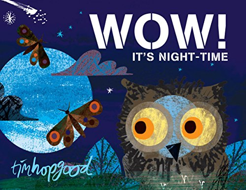 WOW! It's Night-time By Tim Hopgood