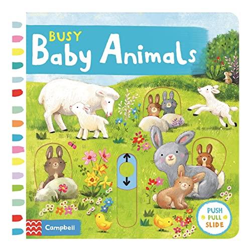 Busy Baby Animals von Ag Jatkowska