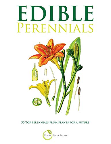 Edible Perennials By Plants for a Future