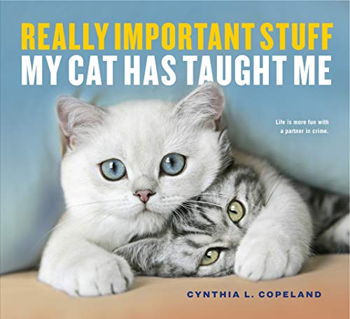 Really Important Stuff My Cat Has Taught Me By Cynthia L. Copeland
