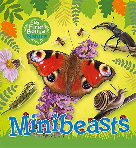 My First Book of Nature: Minibeasts By Victoria Munson