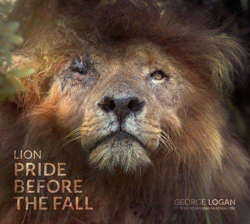 Lion: Pride Before the Fall By George Logan