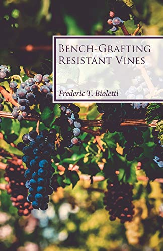 Bench-Grafting Resistant Vines By Frederic T Bioletti
