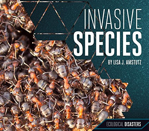 Invasive Species (Ecological Disasters) By Lisa J Amstutz